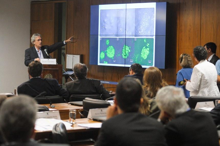 Pesquisadores questionam testes governamentais da fosfoetanolamina