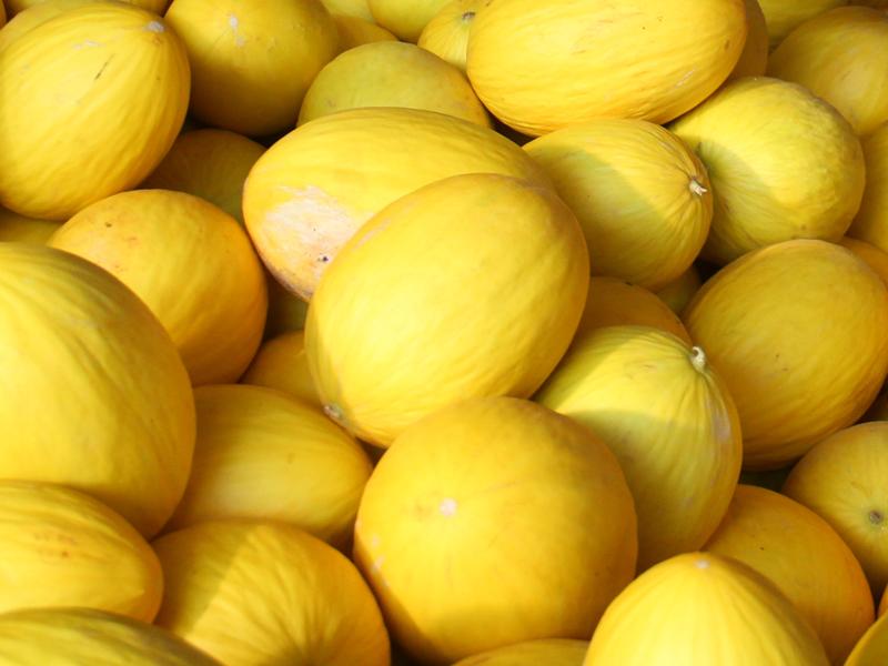 Maior exportadora de frutas do Ceará se instala no RN