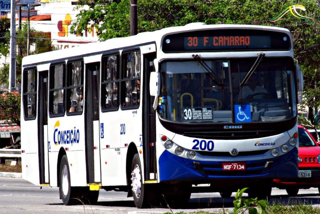 Ônibus passam a circular pelas marginais da BR-101