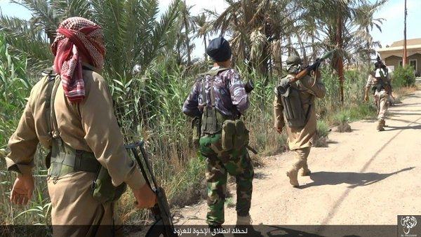 Em ofensiva contra EI, tropas do Iraque entram em Fallujah