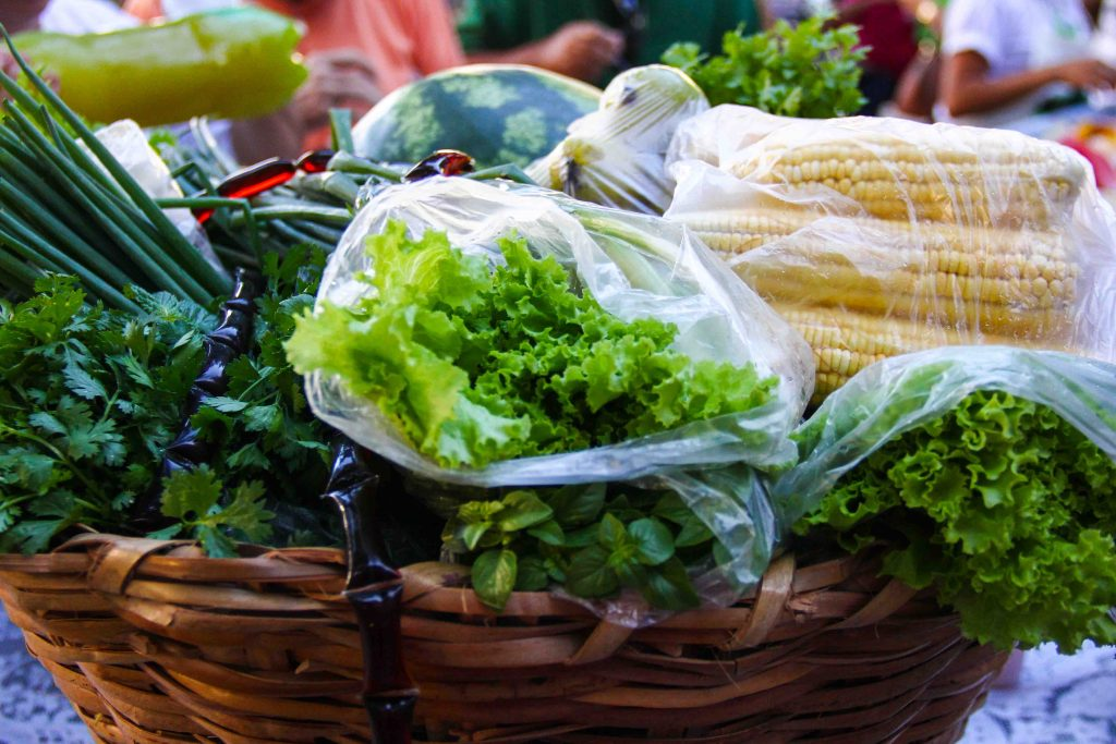 Alimentos orgânicos: saúde à mesa dos potiguares