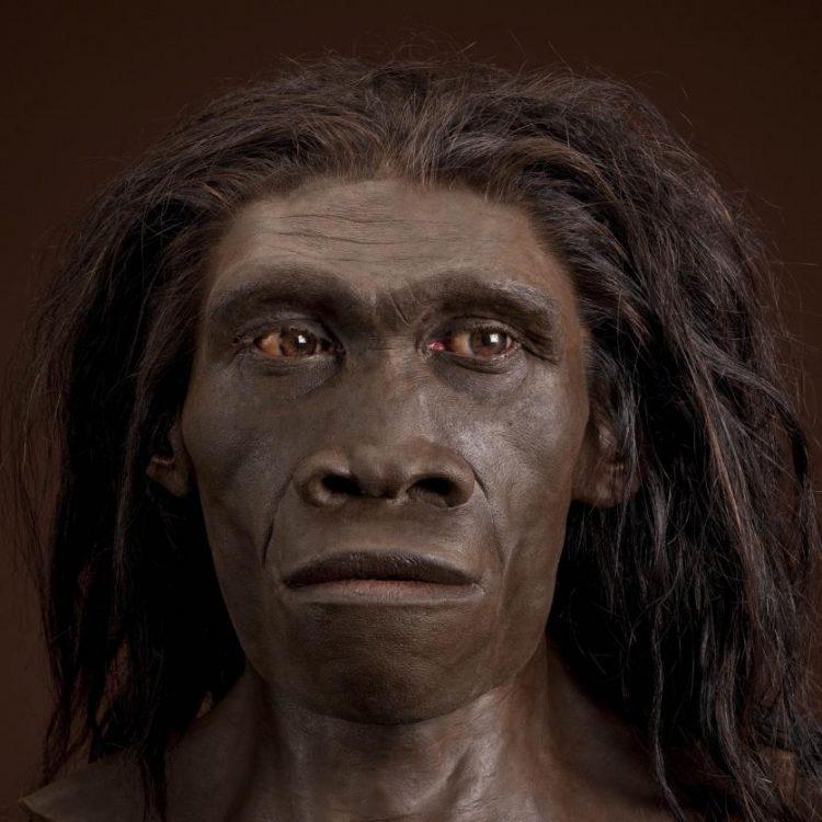 Escavadores encontram primeiras pegadas de Homo Erectus
