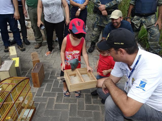 Aves resgatadas em cativeiros de Natal são devolvidas à natureza