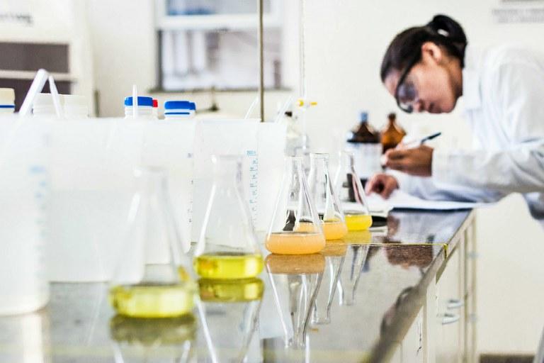 Número de mestres e doutores cresce nas regiões Norte e Nordeste