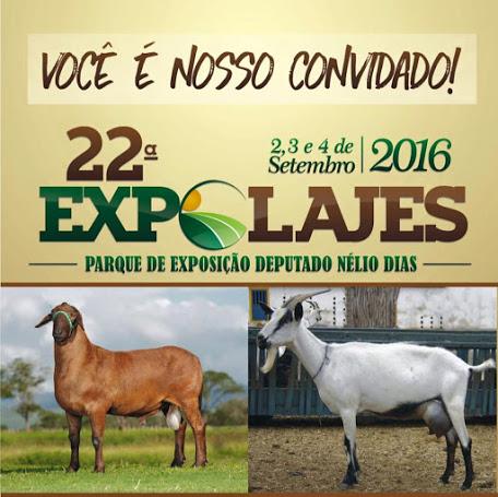 22ª ExpoLajes começa na próxima sexta-feira