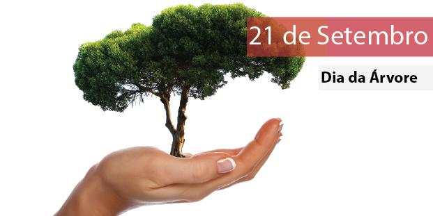 Prefeitura de Parnamirim vai distribuir mudas frutíferas no dia da árvore