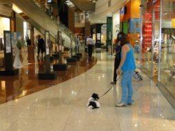 comercio-natal-shopping