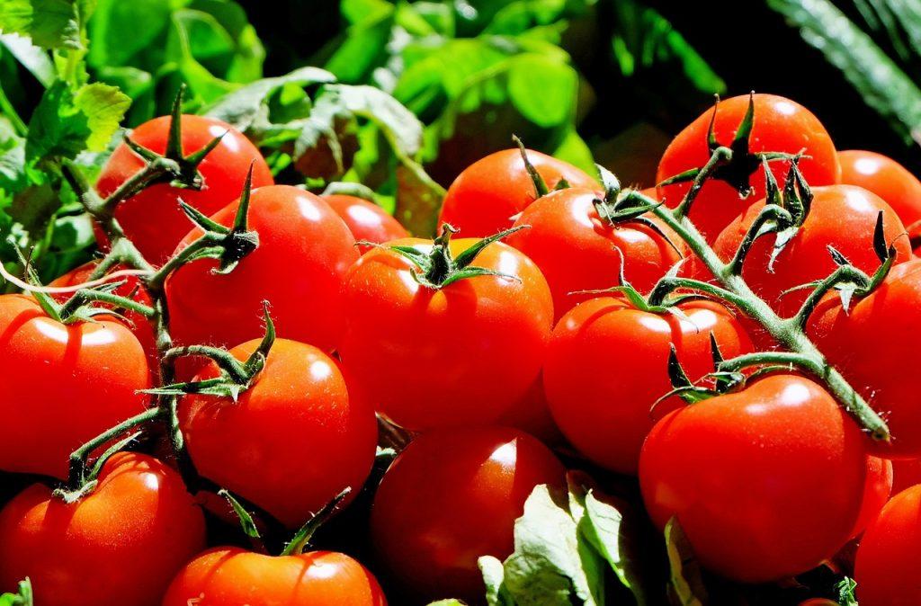 Conheça os benefícios do tomate
