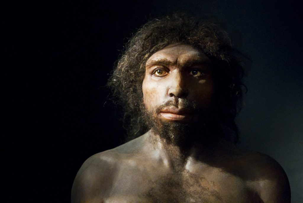 Homo sapiens é mais velho do que se imaginava, aponta estudo