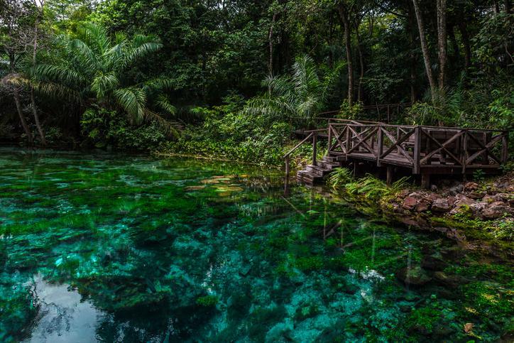 Bonito: o paraíso brasileiro de ecoturismo no MS