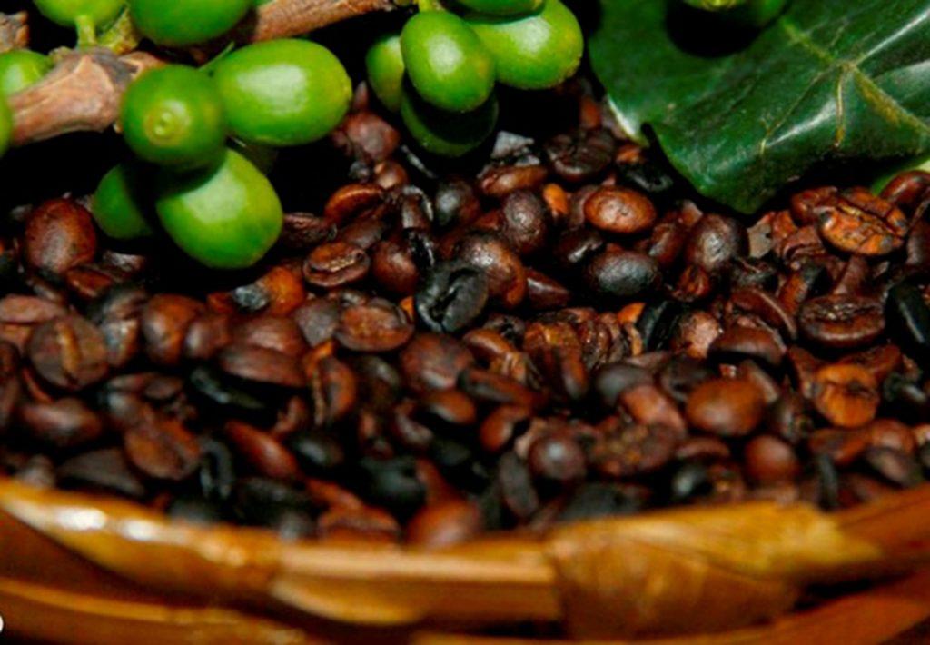 Café Ouro Branco retoma atividades em Currais Novos
