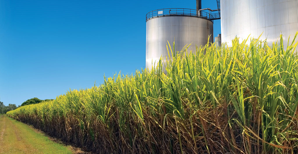 Biomassa supera usina Itaipu em capacidade instalada de energia