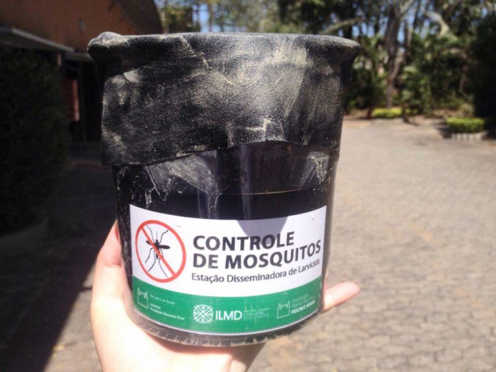 Natal implementa nova técnica de combate ao Aedes aegypti