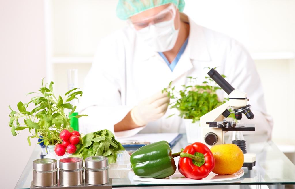 Confira quais as melhores faculdades de nutrição do Brasil