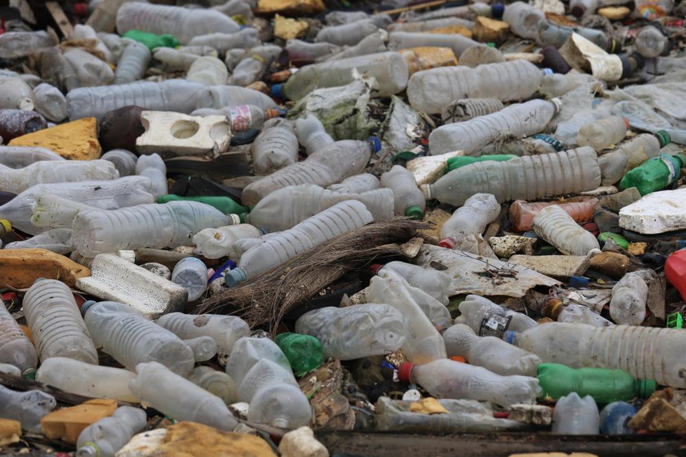 Resíduos sólidos: descarte correto previne doenças e poluição do meio ambiente