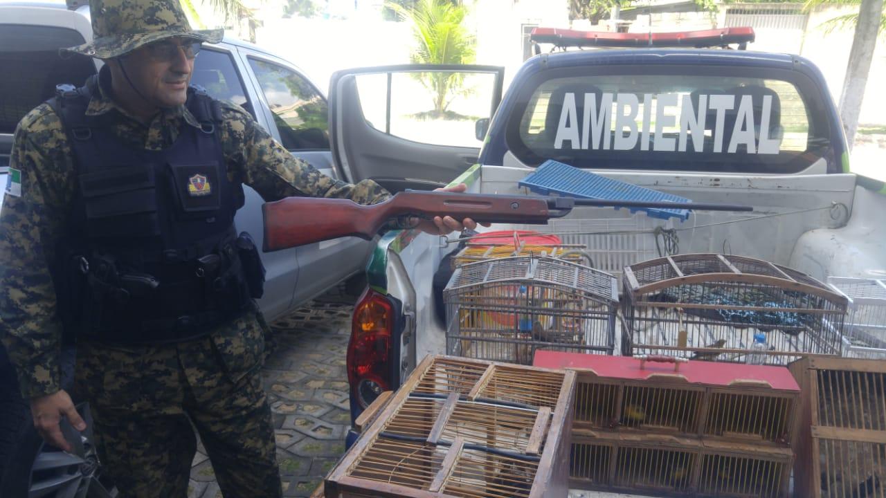 Guarda Municipal resgata 163 pássaros silvestres em feiras livres da zona Norte