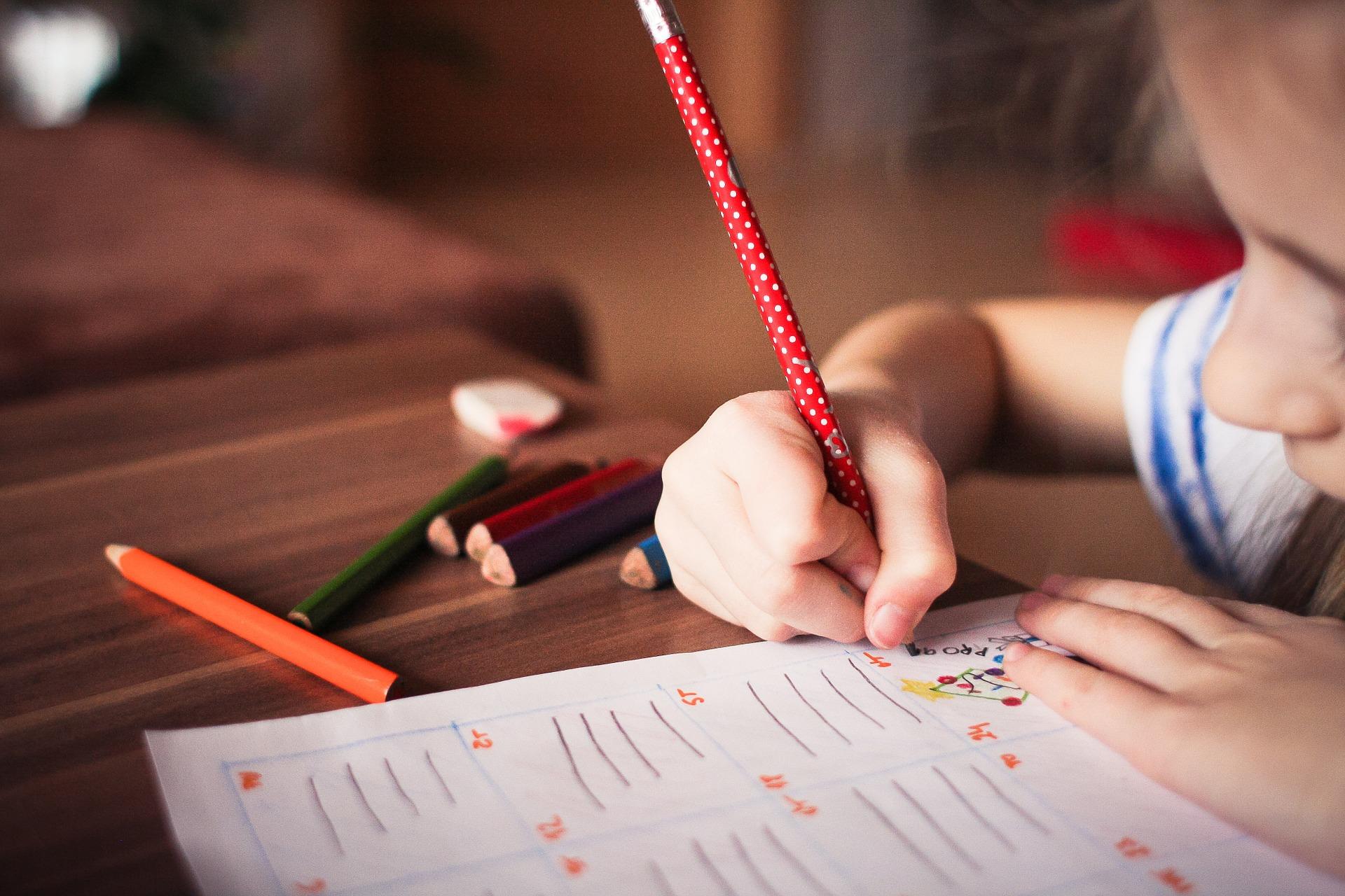 Bolsa de estudo é alternativa para os pais economizarem nas mensalidades da escola