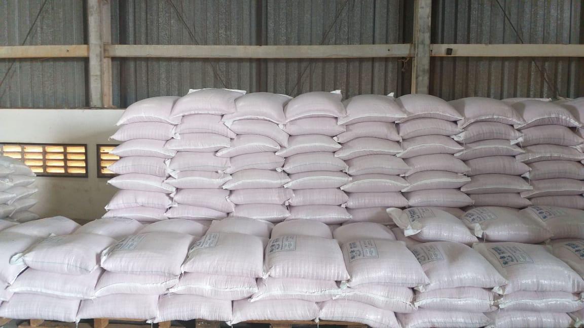 Governo do RN distribui sementes para 52,5 mil agricultores