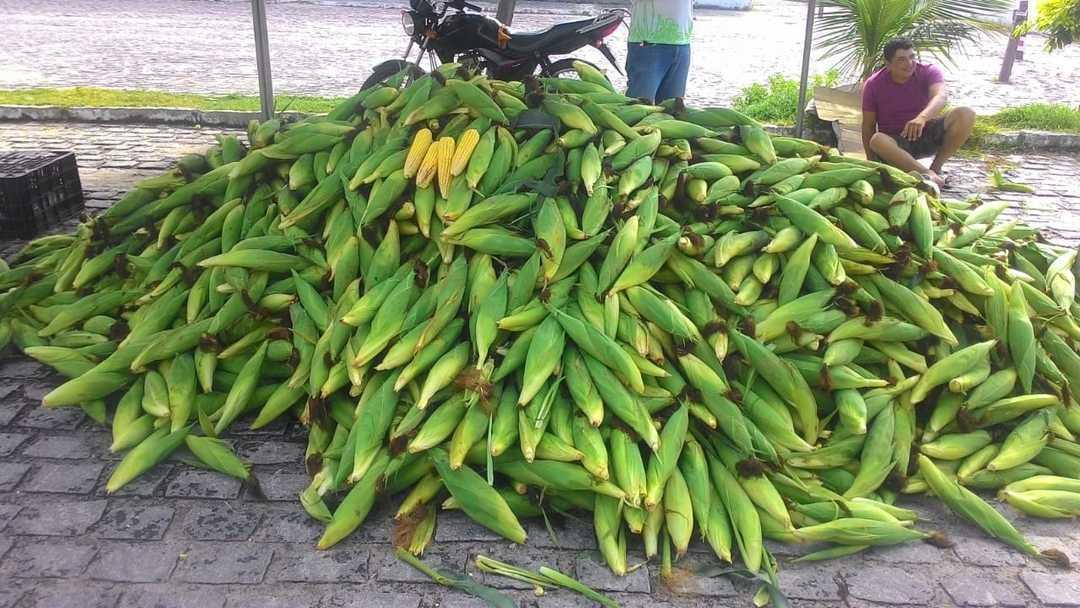 """Comerciantes da """"Feira do Milho"""" esperam aumento de 80% nas vendas"""