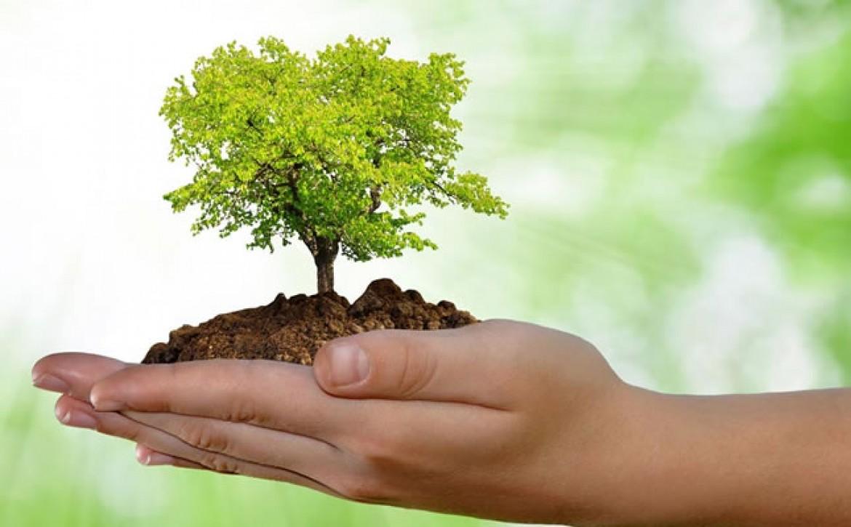 Pós em Desenvolvimento e Meio Ambiente abre vagas na UFRN