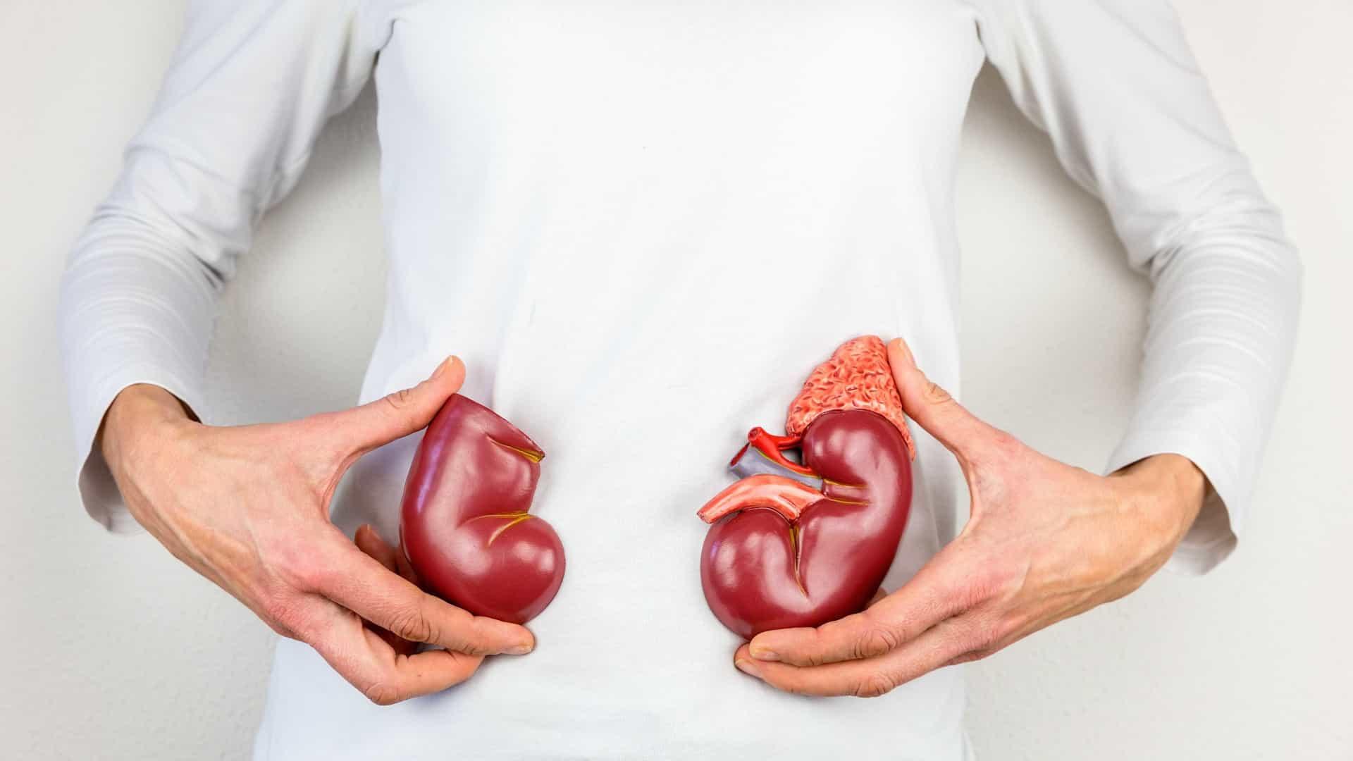 Câncer de rim pode ser diagnosticado precocemente