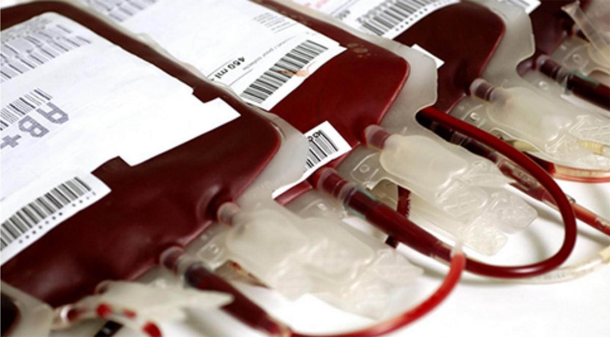 Doação de sangue precisa crescer 30% para recuperar normalidade