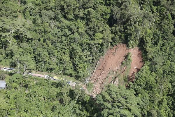 Alta no desmatamento coroa desmonte ambiental de Bolsonaro e Salles