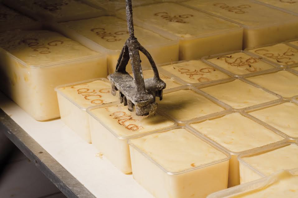 Governo assina ordem de serviço para construção de 15 queijeiras no Seridó