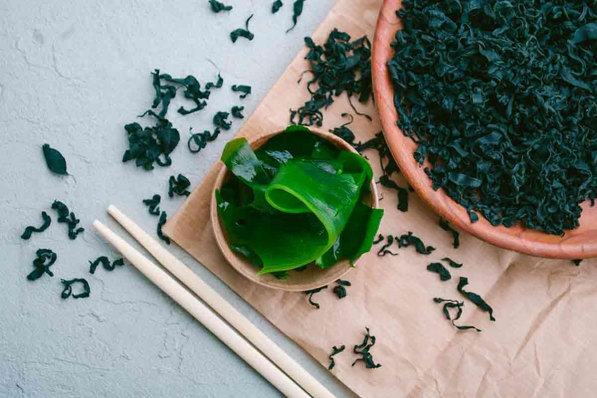 4 razões para incluir as algas marinhas em sua dieta
