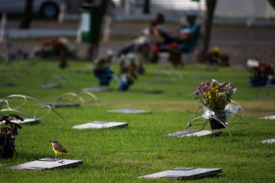 Dia de Finados: mais de 15 mil pessoas são esperadas nos cemitérios do Grupo Vila