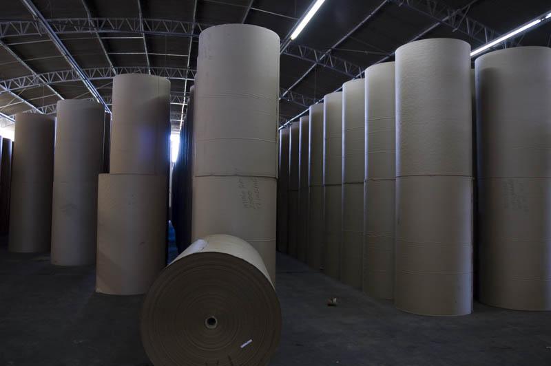 Mercado de papelão reciclado cresce no Brasil