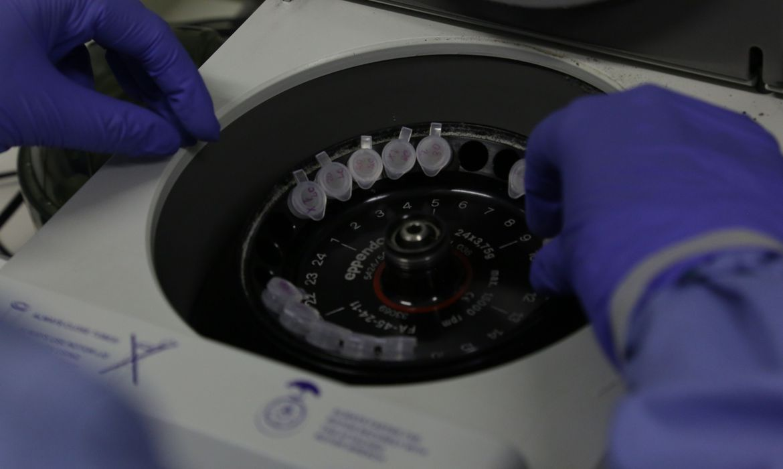 Brasil tem 132 casos suspeitos do novo coronavírus