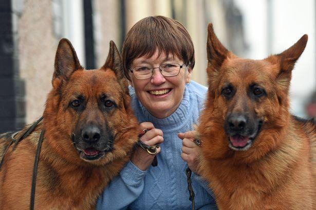 Cães salvam mulher ao detectarem que ela tinha câncer