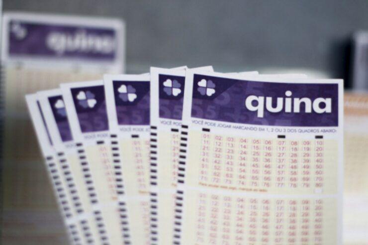 Resultado oficial da Quina concurso 5187: prêmio de R$ 14,6 milhões