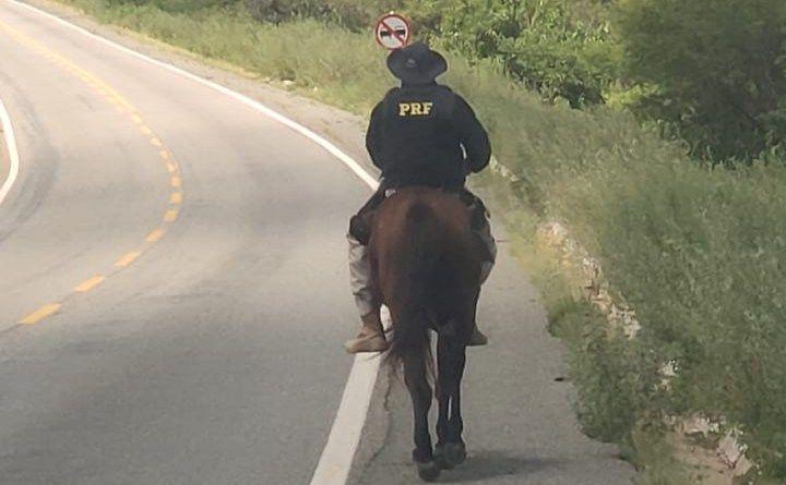 Adolescente é apreendido após furtar cavalo que estava em pátio da PRF