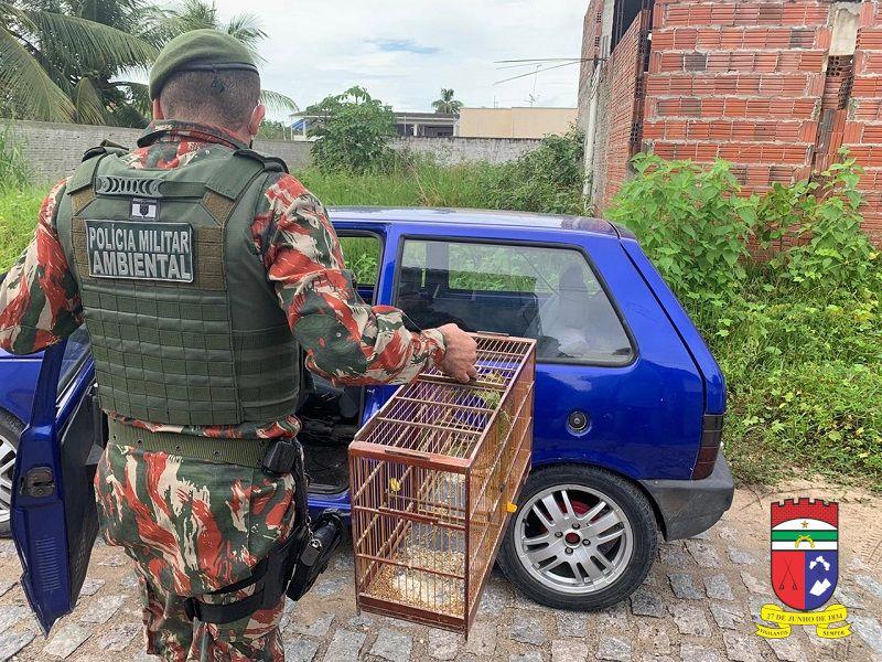 CIPAM detém 29 pessoas em Parnamirim por crime contra a fauna