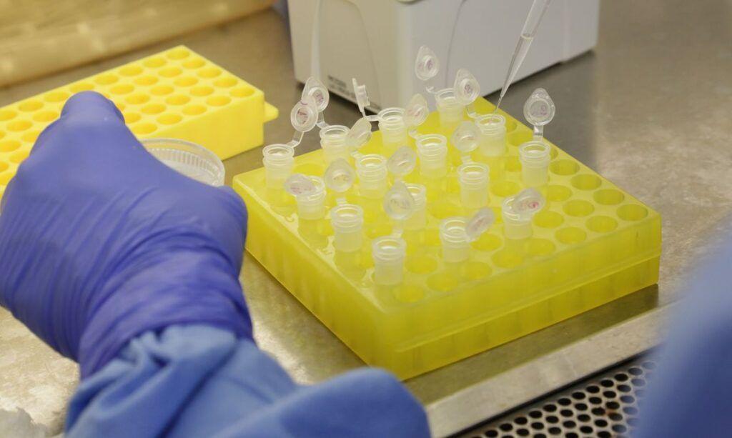 Teste de vacina contra Coronavírus tem 'bom resultado em ratos'
