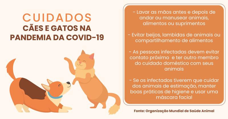 Cães e gatos podem ser infectados com o novo coronavírus
