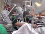 Covid-19 Brasil bate recorde de mortes e casos confirmados notificados