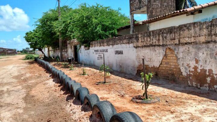 Funcionário da Urbana transforma ponto de lixo em área verde