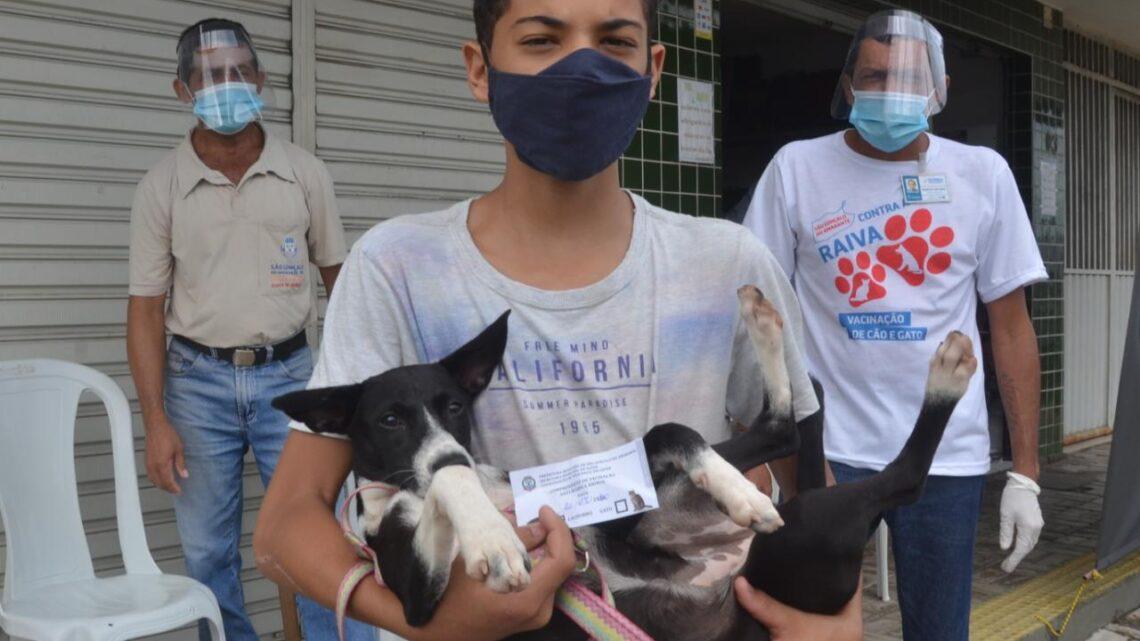 São Gonçalo do Amarante segue com campanha de vacinação antirrábica
