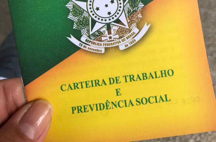 carteira verde e amarela