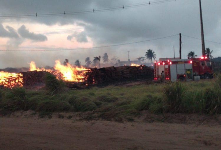 Bombeiros combatem incêndio florestal em canavial de Monte Alegre