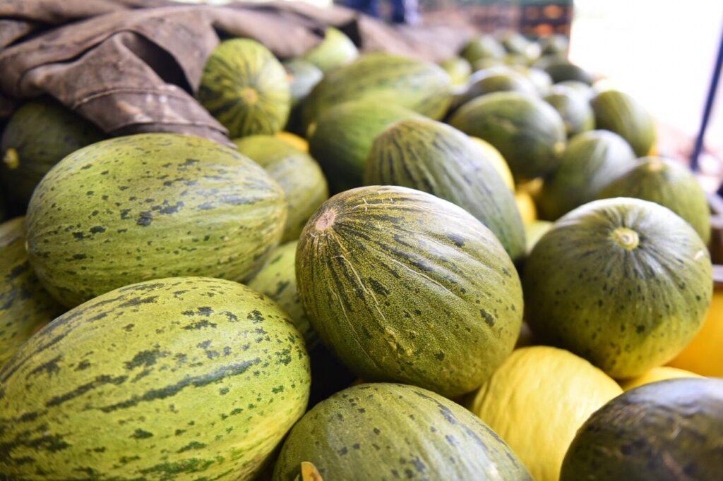 China recebe primeira carga de melão do RN