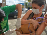 Dia D da vacinação antirrábica acontece neste sábado em Parnamirim