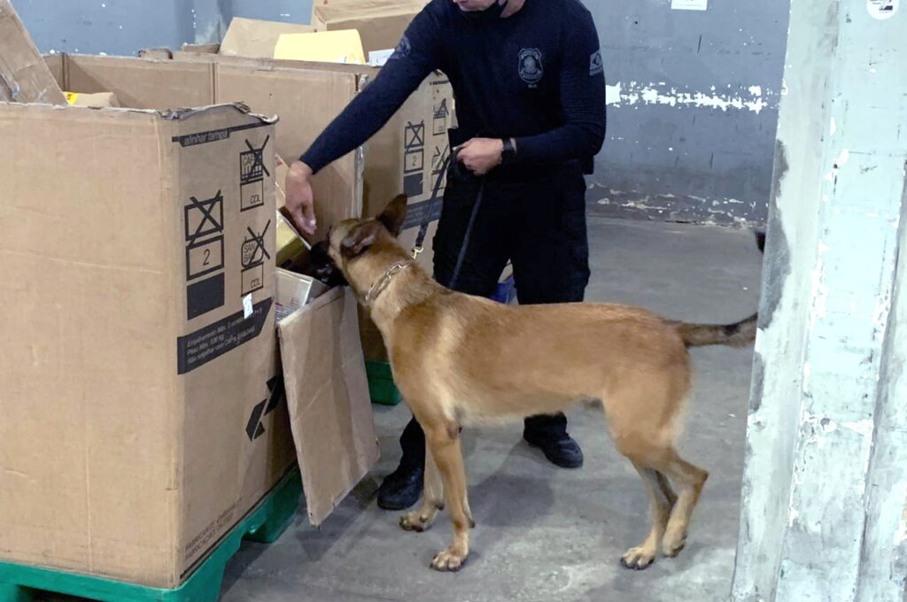 Pó via Correios: PF apreende 5 kg de cocaína enviada para Natal