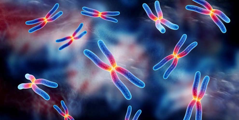 Vexas: cientistas descobrem nova doença mortal apenas nos homens