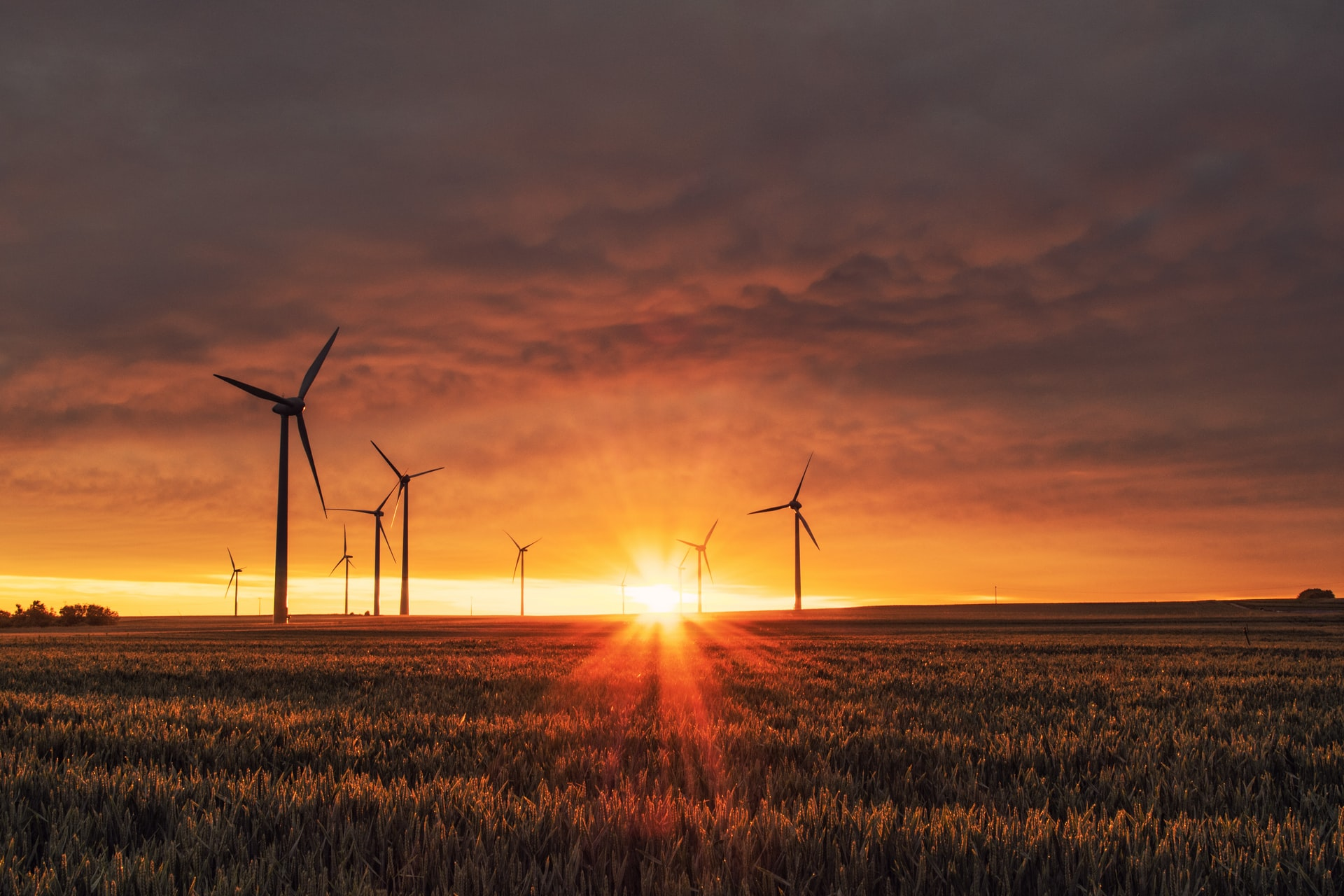 Perspectivas para o setor eólico do Brasil em 2021