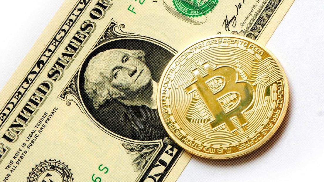 """""""Uma moeda para governar todos"""": novo tweet de Elon Musk parece apoiar o Bitcoin"""