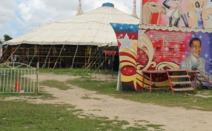 Novo decreto permite funcionamento dos circos em Parnamirim